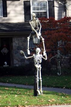 creepy would be cool to use them near the walkway with the child carrying a trick or treat bag ewww with cobwebs spiders coming out of it - Skeleton Halloween Decoration