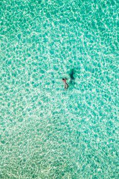 Lone Swimmer, Bondi Photo: Eugene Tan  :-)