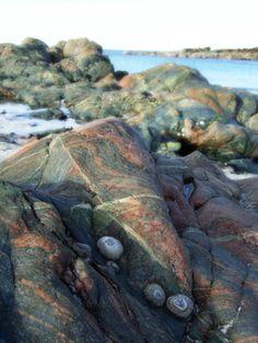 rocks. Isle of Iona, Scotland.