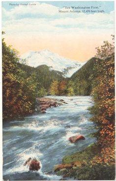Vintage Washington State Postcard  Mount Adams by VintagePlum