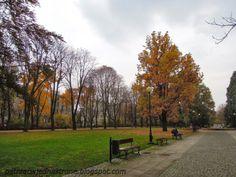 patrząc w jedną stronę: Park Dreszera