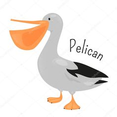 pelican animal coloring pages. Image result for tiki pelican cartoon Print coloring page and book  Birds Pelican Animals Coloring Pages