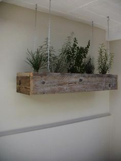 Love this space saving design. It would also look great hanging in front of a window. Indoor herb garden