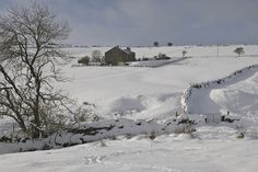 Snow blanketing the Yorkshire Dales area ... photo by Michael Gibbons