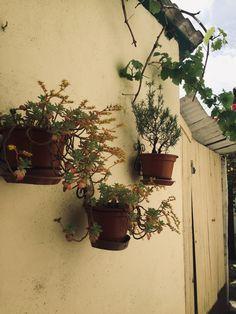 Elizondo, spain My Photos, Planter Pots, Spain