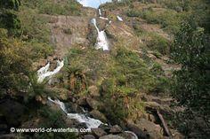 St Columba Falls Pyengana / near St Helens, Tasmania, Australia St Columba, Tasmania, Waterfalls, Saints, Australia, World, Outdoor, Outdoors, Stunts