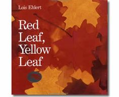 Red Leaf, Yellow Leaf by Lois Ehlert. Fall books for children.