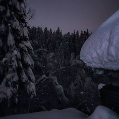 #nutshellnorway #norway_photolovers #bevisuallyinspired #fiftyshades_of_nature_ #tree_magic #blackandwhiteonly #worldbestgram #igworld_global #globalcapture #milliondollarvisuals  #amazing_fs #ig_shotz_trees #norgesfoto #dreamynorway #igscandinavia #earth_shotz #imagesofnorway #world_beautifulshots #wwnf_beautifultrees  #world_bestsky #pocket_trees #blackandwhite #princely_bw #ig_shotz_trees  #blackandwhite #blacandwhitephotography