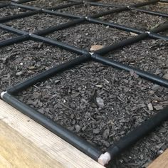 Plant by area not by rows! For all average to small variety carrots ?plant 16 Per Garden Grid watering system square ?Cover seeds slightly to not at all with soil.Water thoroughly and consistently carrots love moisture and do best with when Garden Yard Ideas, Veg Garden, Vegetable Garden Design, Edible Garden, Water Garden, Garden Sheds, Garden Boxes, How To Plant Carrots, Planting Carrots Seeds