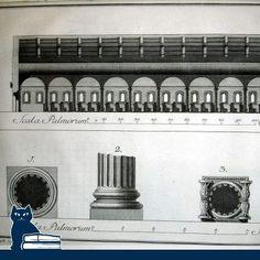 la Biblioteca Malatestiana nel Settecento:  Catalogus codicum manuscriptorum Malatestianae Caesenatis bibliothecae. Cesenae, typis gregorii Blasini sub signo Palladis, 1780-84  [www.libriantichionline.com]