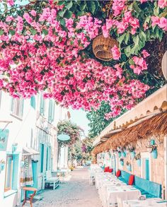 ☆Alacati - Turkey