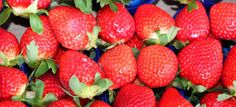 background red ripe strawberries for sale in the market
