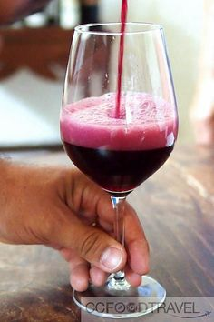 """An evening with Lambrusco Wines in Reggio Emilia"" by @ccfoodtravel"