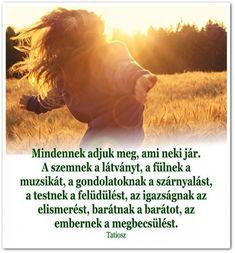 idézet, bölcsesség, élet,