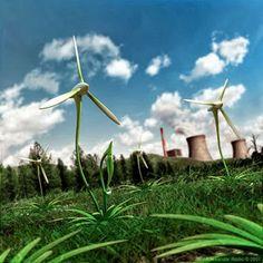 energie rinnovabili AM