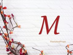 Uppercase letter M with berry garland and sweater knit. #fall #autumn #alphabet #typography #initial #monogram #font