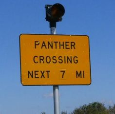 Panther Crossing - next 7 miles: This was taken on my way to Key West.  I was on the Tamiami Tail heading to my 1st destination of Key Largo and my friends sailboat when I saw this sign