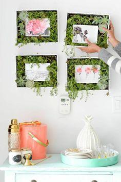 DIY succulent frame ♥