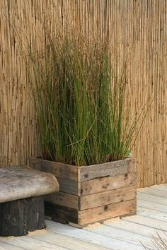 So easy to achieve with a recycled wooden crate & recycled wood for a seat