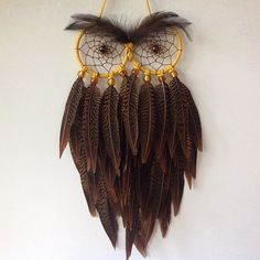 A very handsome Yellow Eyed Chocolate Brown Stripy Single Feather Owl…