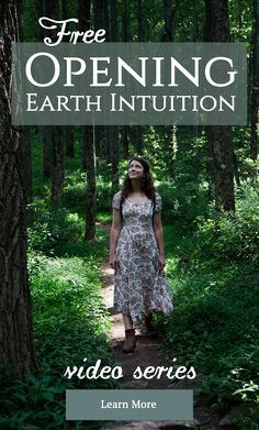 Opening Earth Intuition FREE Online Mini-Course with Asia Suler of One Willow Apothecaries  #herbalism #herbalmedicine #floweressences #intuitiveplantmedicine
