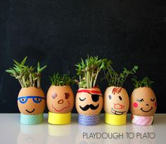 Activity for ages 3 to 8. I love kids' science and spring is the perfect time to learn about plants. My family's favorite way to watch seeds grow is from our very own egg head planters. With a quick trip to the grocery store or your refrigerator you can create these funny egg heads too! For even more …