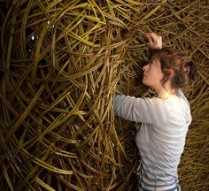 The Sculptural Work of Laura Ellen Bacon materials