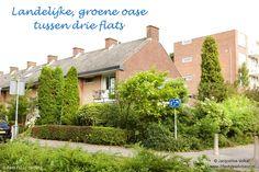 Album pag 1.  Weelderige, romantische stads tuin met blauwe, witte en lila bloemen. Urban Oasis. Romantic garden. Design: ©Jacqueline Volker www.lifestyleadviseur.nl Image: Frans de Jong.