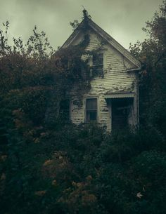Forest Cabin, Forest House, Abandoned Buildings, Abandoned Places, Creepy Old Houses, Forgotten Treasures, Old Cabins, Dark Forest, Cabin Homes