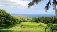Puakea Ranch Hawaii
