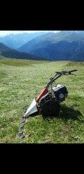 Landwirtschaftliche Maschinen & Geräte kaufen | Second Hand Südtirol Second Hand, Two Hands, Pets, Agriculture, Old Photos, Animals And Pets
