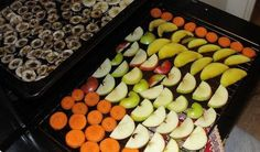 How To Dehydrate Food - Green-Mom.com