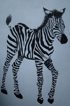 Zebra by ~DolphinJelly on deviantART