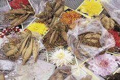 karpy dalii przygotowane do sadzenia fot. iBulb