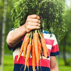 5 surprising foods (beyond carrots!) that will help keep your eyes healthy and your vision sharp. | Health.com