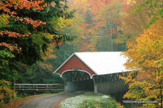 Flume Covered Bridge in Autumn Franconia, Notch State Park New Hampshire