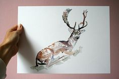 Original Deer Watercolor Painting  Deer with antlers by Zendrawing