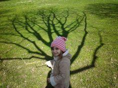 Alla scoperta delle ombre