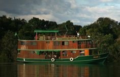 Jacare Acu Amazon Cruise Ship  Brazil