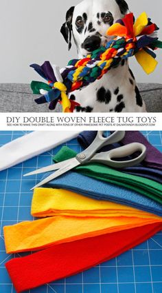 Tug of Tugs! DIY Double Woven Fleece Dog Tug Toy DIY Dog Toy – A Tug of War! Double woven guide for rainbow fleece dog towing toy. Homemade Dog Toys, Diy Dog Toys, Pet Toys, Toy Diy, Baby Toys, Dog Enrichment, Dog Games, Training Your Puppy, Training Tips