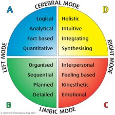 """Critical Thinking Brain 