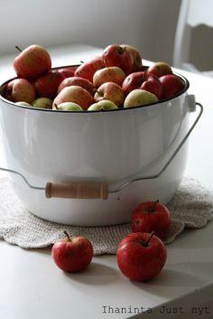 Työnnämpä minäkin kauhani tähän hilloon! :D Sain ämpärillisen omenoita ja päätin kokeilla tehdä elämäni ensimmäistä kertaa niistä hilloa. Selasin netistä ohjeita ja kaikkein parhaimmalta kuulosti u…