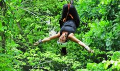 Soar through the treetops of Guanacaste's forests by ziplining the 11 cables and walking over 3 hanging bridges. Keep an eye on your surroundings for the chance of spoting some monkeys! Transportation Services, Types Of Food, Health And Safety, Congo, Monkeys, Bananas, Costa Rica, Platforms, Canopy
