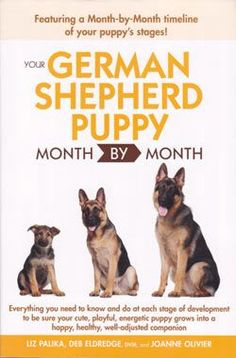 A month by month guide to your German Shepherd puppy's first year, you'll find everything you need to know and do at each stage of development. Detailed information and tips help you make sure your pup grows into a happy, healthy, confident and well-adjusted companion. Veterinary expert Deb Eldredge, DVM, and long-time German Shepherd breeder Joanne Oliver lend their expertise in this comprehensive reference for new puppy owners.