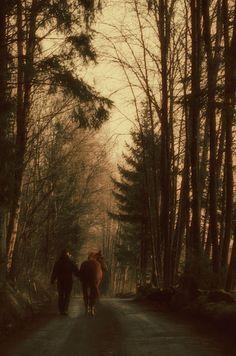Quiet morning walk ~