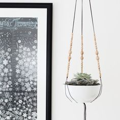 MORE COLORS Hanging Planter without Pot Medium Modern by HRUSKAA