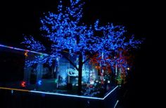 eZone Outdoor Solar String Lights 33ft/10m 100 Blue led for Wedding, #party