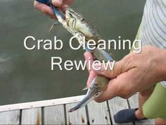 ▶ How to Cook Blue Crabs North Carolina Style - YouTube