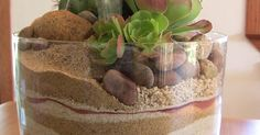 Succulent trifle dish garden