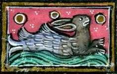 Half rabbit, half fish - Thomas of Cantimpré, Liber de natura rerum, France ca. 1290 (Valenciennes, Bibliothèque municipale, ms. 320, fol. 1...